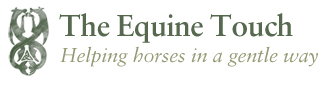 The Equine Touch New Zealand